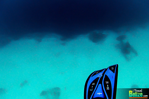 Fifty Shades of Blue – Snorkeling the Great Blue Hole of Belize