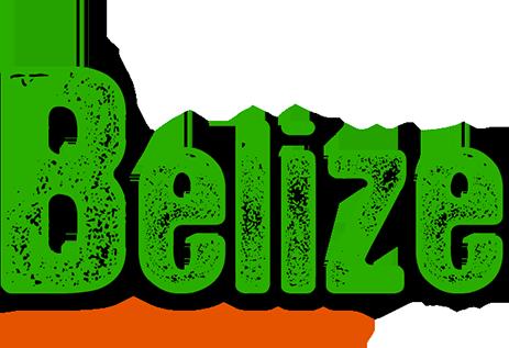 slide logo white