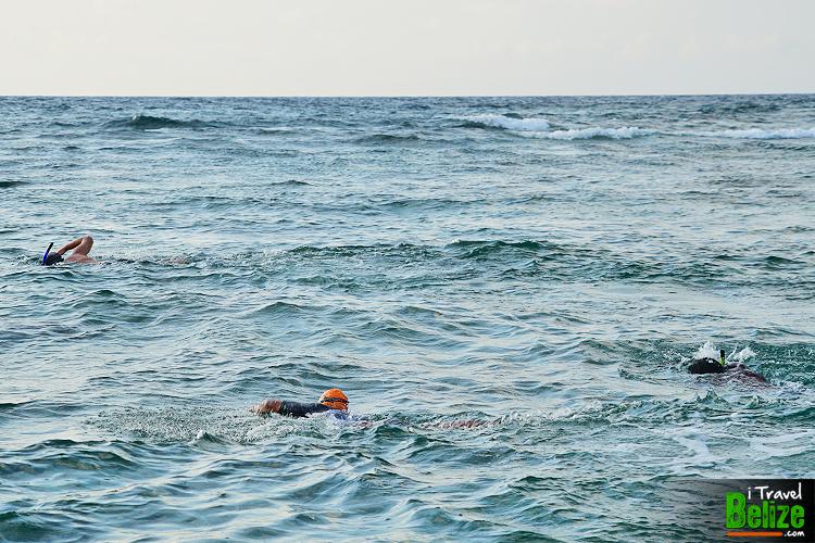 swim-reef-awareness-10