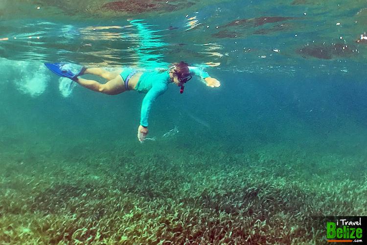 swim-reef-awareness-14