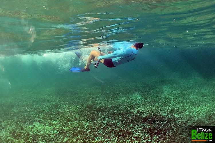 swim-reef-awareness-15