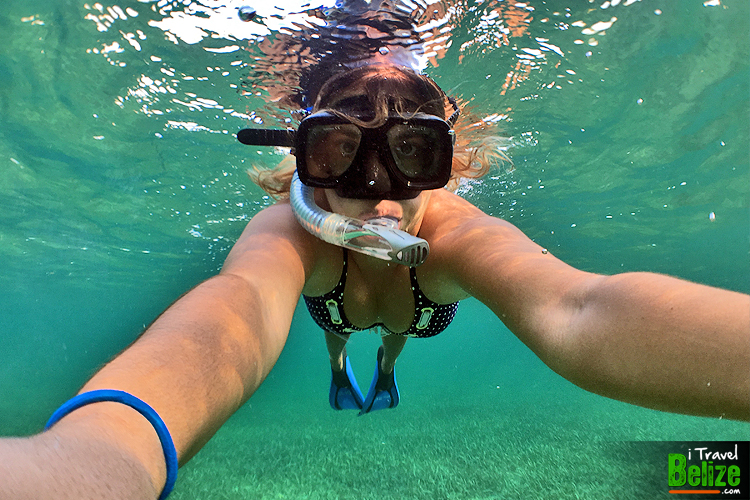 Reef Awareness Swim