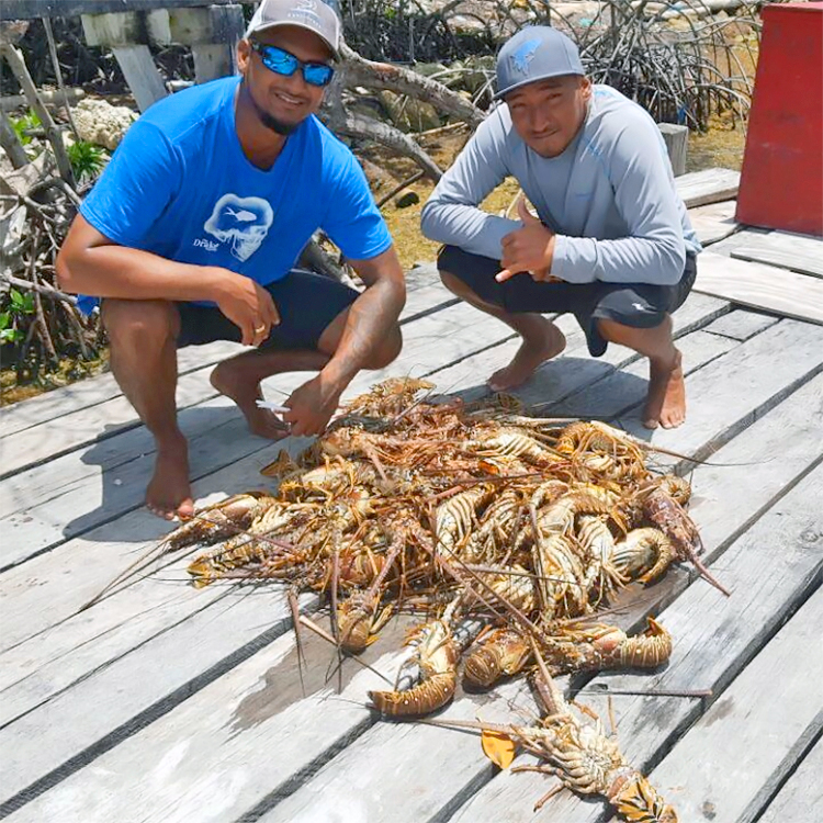"David Vasquez posts - ""Nature has blessed the with wealth untold! Our first haul of the lobster season, found that honey hole, one coral 60 Lobsters,100 total, just two hours of swimming!"