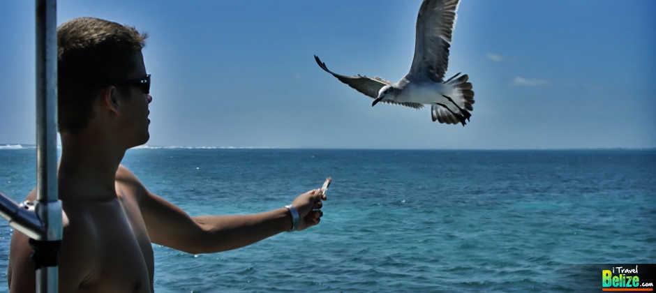 Travel Belize Caye Caulker Invest