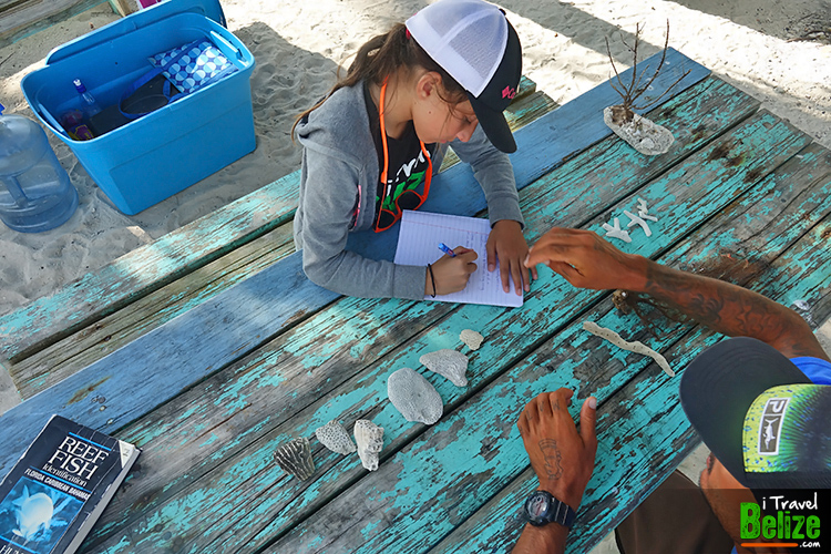 Learning about Corals on the Belize Barrier Reef