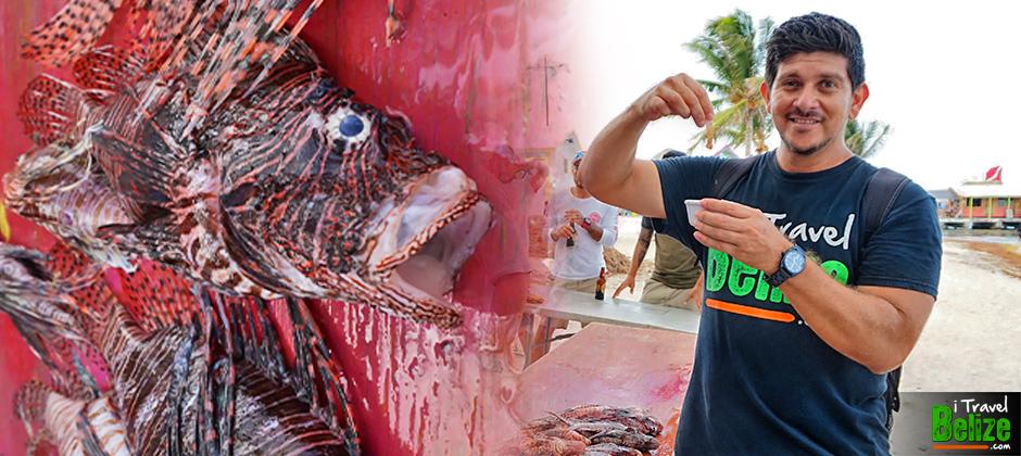 Lionfish Tournament in San Pedro, Ambergris Caye, Belize